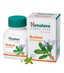 BRAHMI (Bacopa Monnieri) - polepsz IQ! 60 tabl. suplement diety Himalaya Herbals