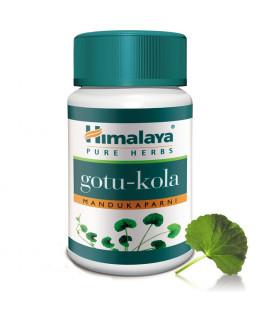Gotu Kola (Mandukaparni) Himalaya - pożywka dla mózgu