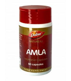Amla (Amalaki) 60 kapsułek Dabur SUPLEMENT DIETY