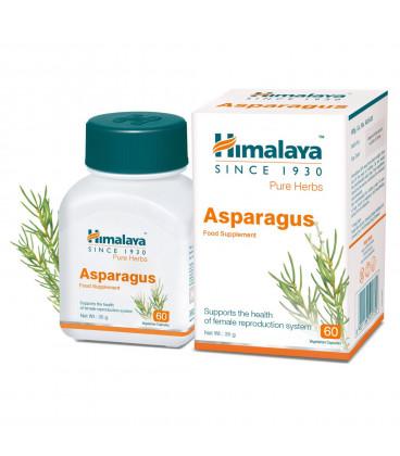 Shatavari (asparagus racemosus ) Himalaya 60 kaps. - Suplement dla każdej kobiety