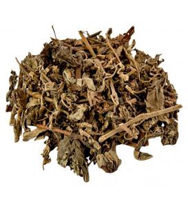 Żywica 1 kg. Patchouli Forest Leaves Natural Resin in Bulk Pack REL-PAF