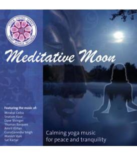 Meditative Moon - Various Artists CD