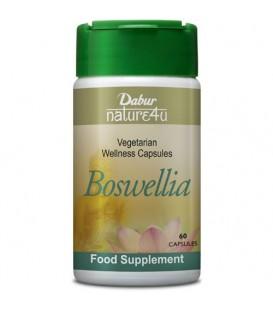 Boswellia Shallaki 60 kaps suplement diety Dabur