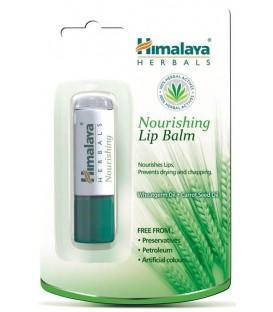 HM Balsam do ust w sztyfcie odżywczy 4,5g Himalaya