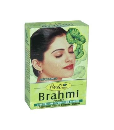 Brahmi puder do włosów 100g Hesh