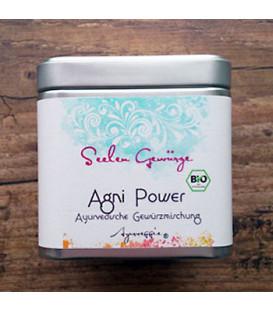 Organiczna mieszanka przypraw Agni Power, Ayurveggie 50g
