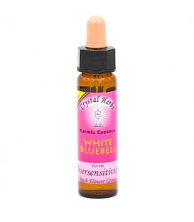 01	White Bluebell, Karmic Flower Essence -- 10 ml