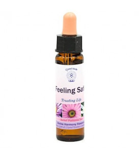 03	Feeling Safe, Belief Patterns Essence -- 10 ml