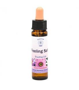 03Feeling Safe, Belief Patterns Essence -- 10 ml