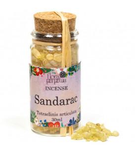 Sandarak z Maroko, kadzidło drzewne (szklana buteleczka z korkiem) 7 g 30 ml Flora Perpetua