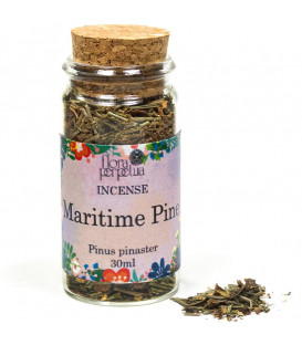 Maritime Pine (Mexican) herbal incense -- 6 g  30 ml