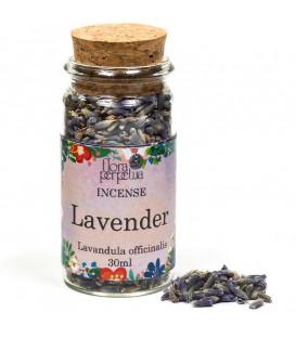 Lawenda (Lavandula officinalis) kadzidło ziołowe (szklana buteleczka z korkiem) 4g 30 ml Flora Perpetua